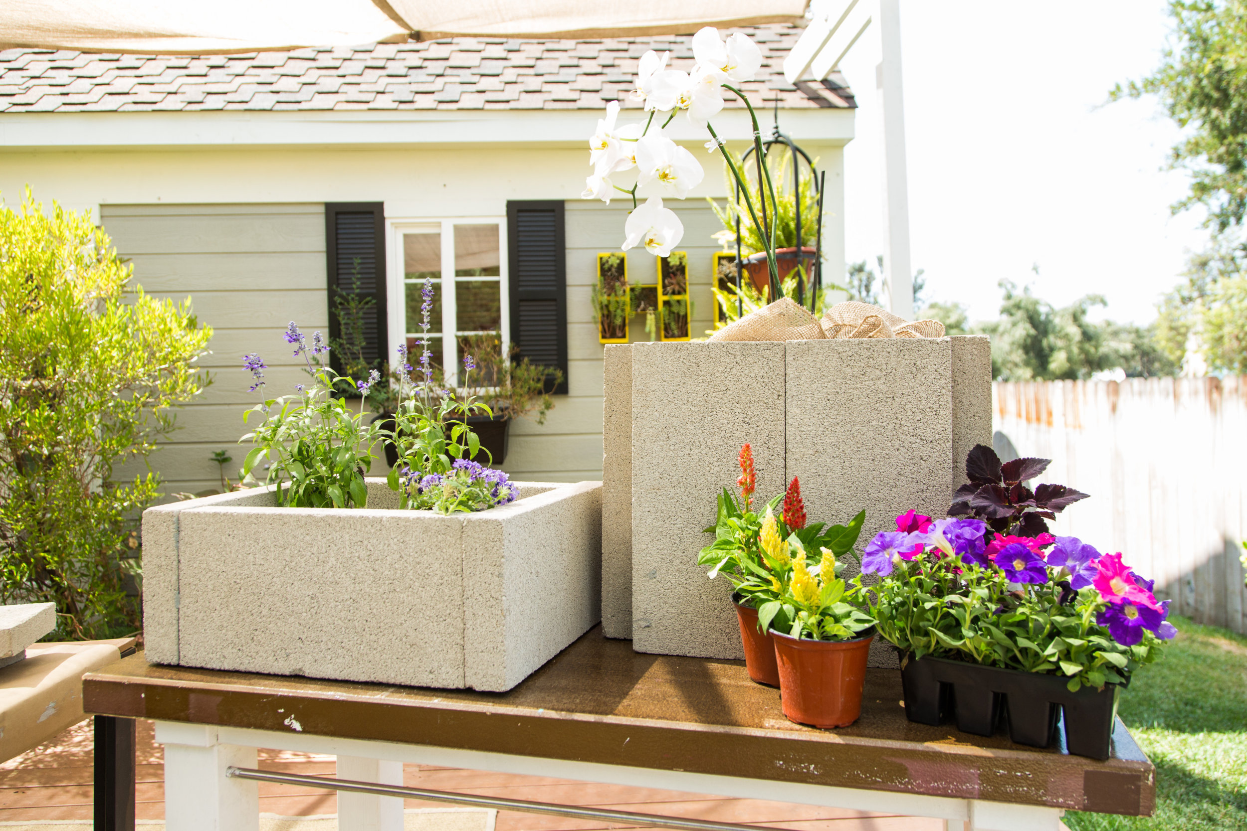 Image result for planter