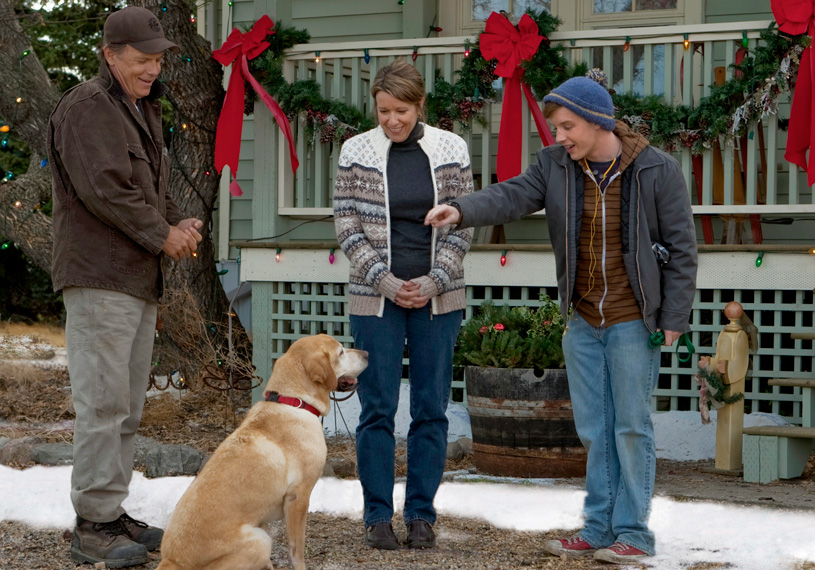 Dog Named Christmas Hallmark Movie For Sale