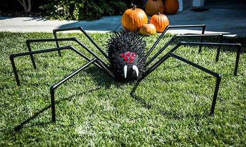 tanya memmes diy giant halloween lawn spider hallmark channel - Giant Halloween Spider