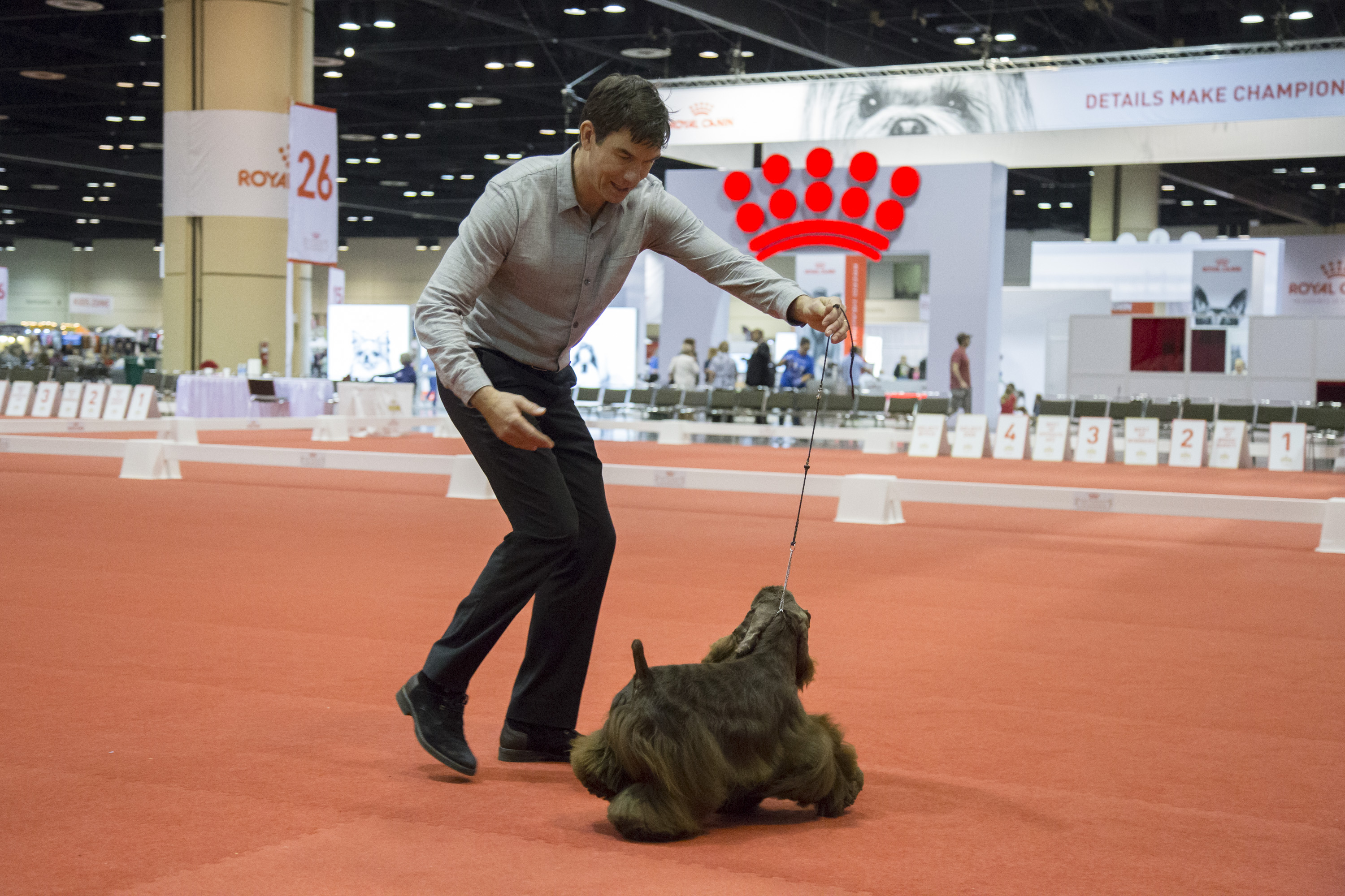 What Channel Is The Akc Dog Show On