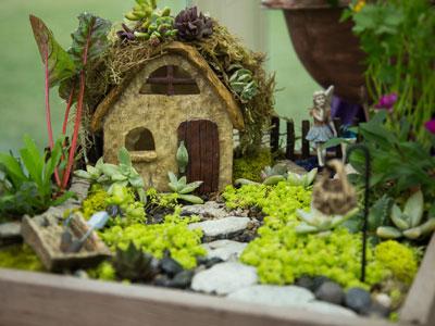 Shirley Bovshows Fairy Gardens Hallmark Channel