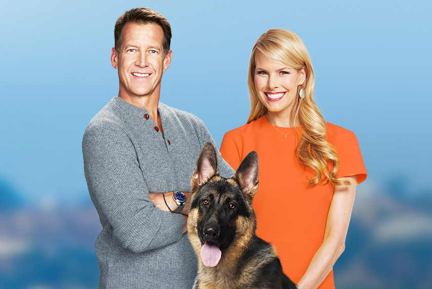 2018 American Humane Hero Dog Awards Hallmark Movies And