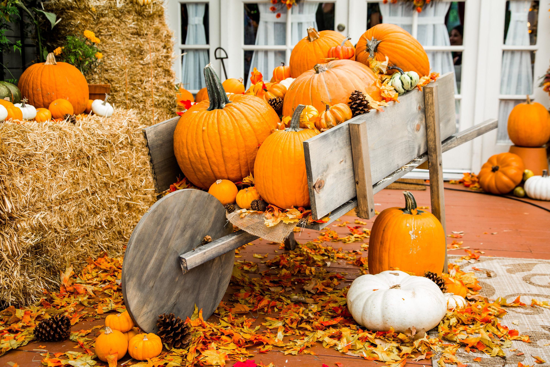 How To DIY Pumpkin Wagon