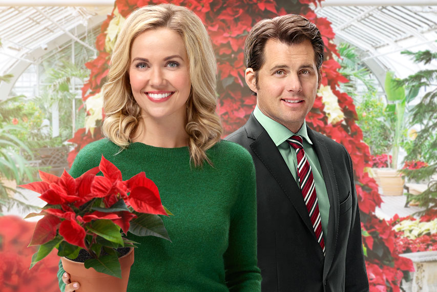Hearts Of Christmas.Hearts Of Christmas Hallmark Movies And Mysteries
