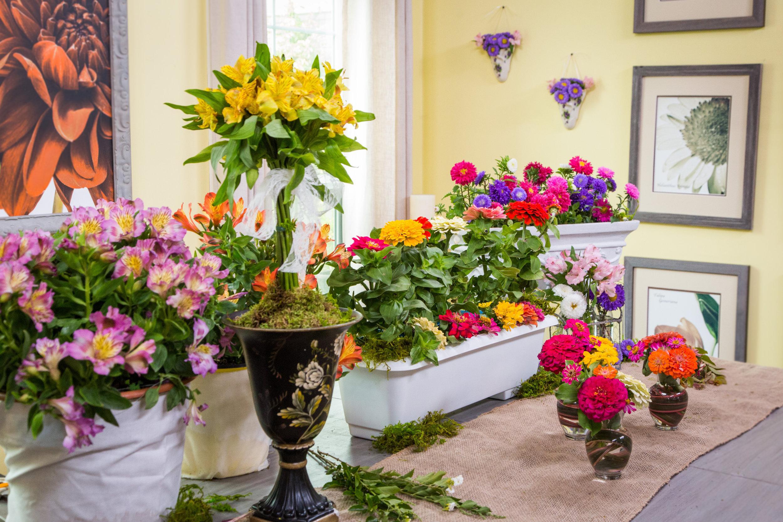 How To Shirleys Diy Home Flower Cutting Garden Home Family