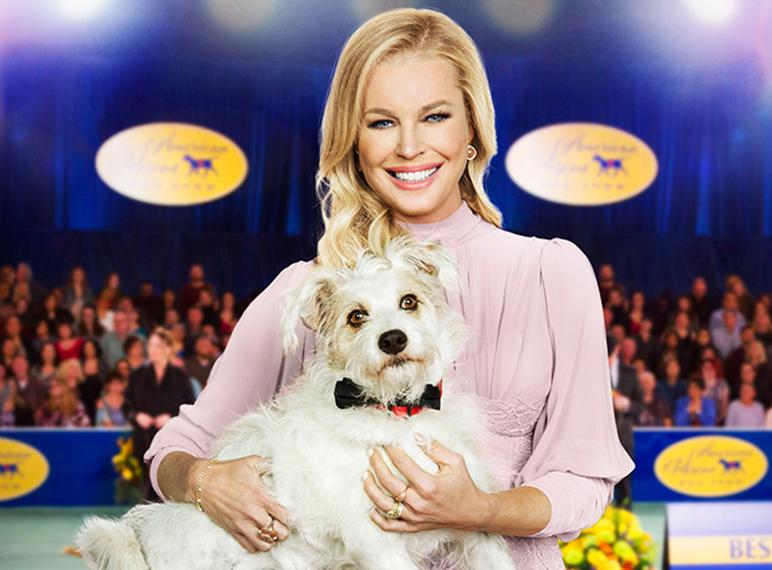 2020 American Rescue Dog Show.American Rescue Dog Show Hallmark Channel