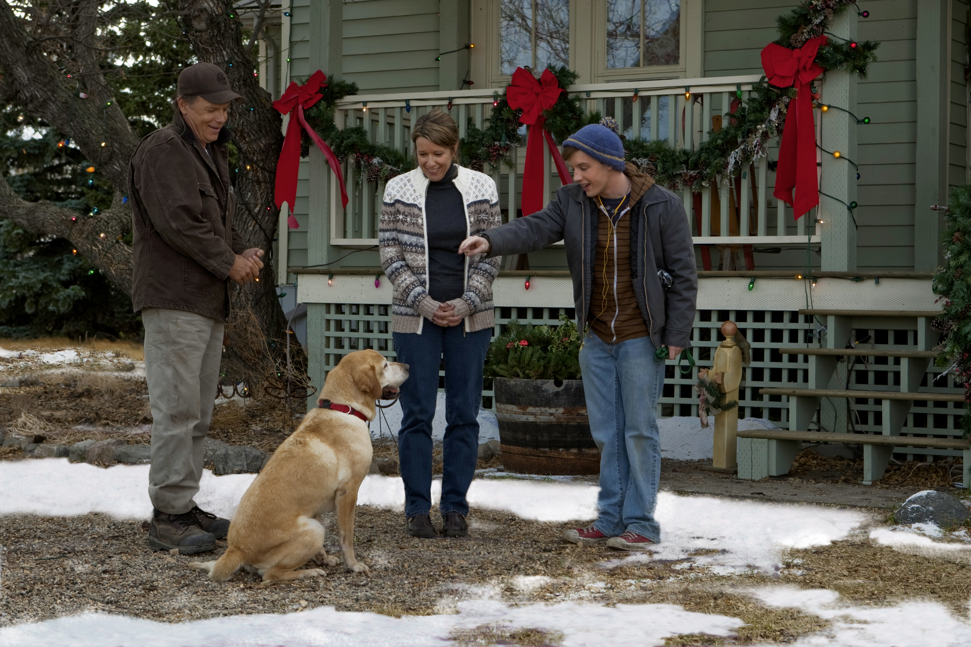A Dog Named Christmas.Photos A Dog Named Christmas Hallmark Drama