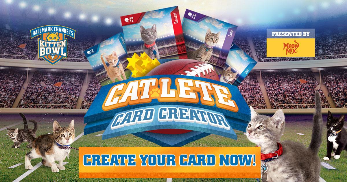 kitten bowl v cat lete card creator hallmark channel