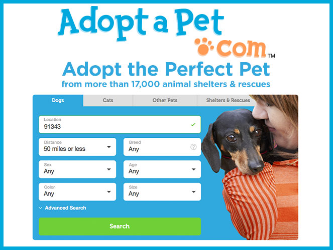 Adopt A Pet Search | Adoption Ever After | Hallmark Channel