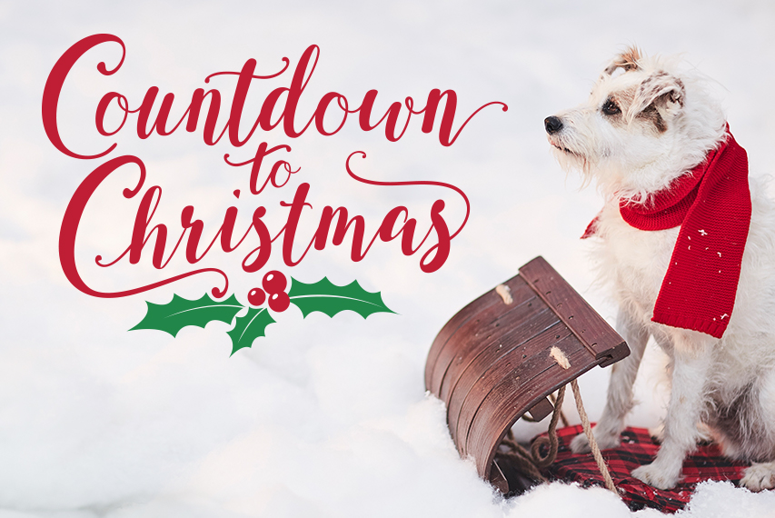 Christmas Countdown 2019.Countdown To Christmas Preview Marry Me At Christmas