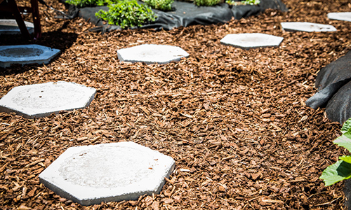 Mark S Diy Garden Stepping Stones Amp Mulching Garden
