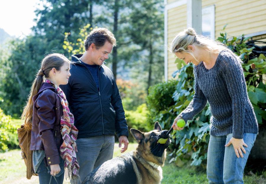 The Christmas Shepherd.Photos The Christmas Shepherd Hallmark Movies And Mysteries
