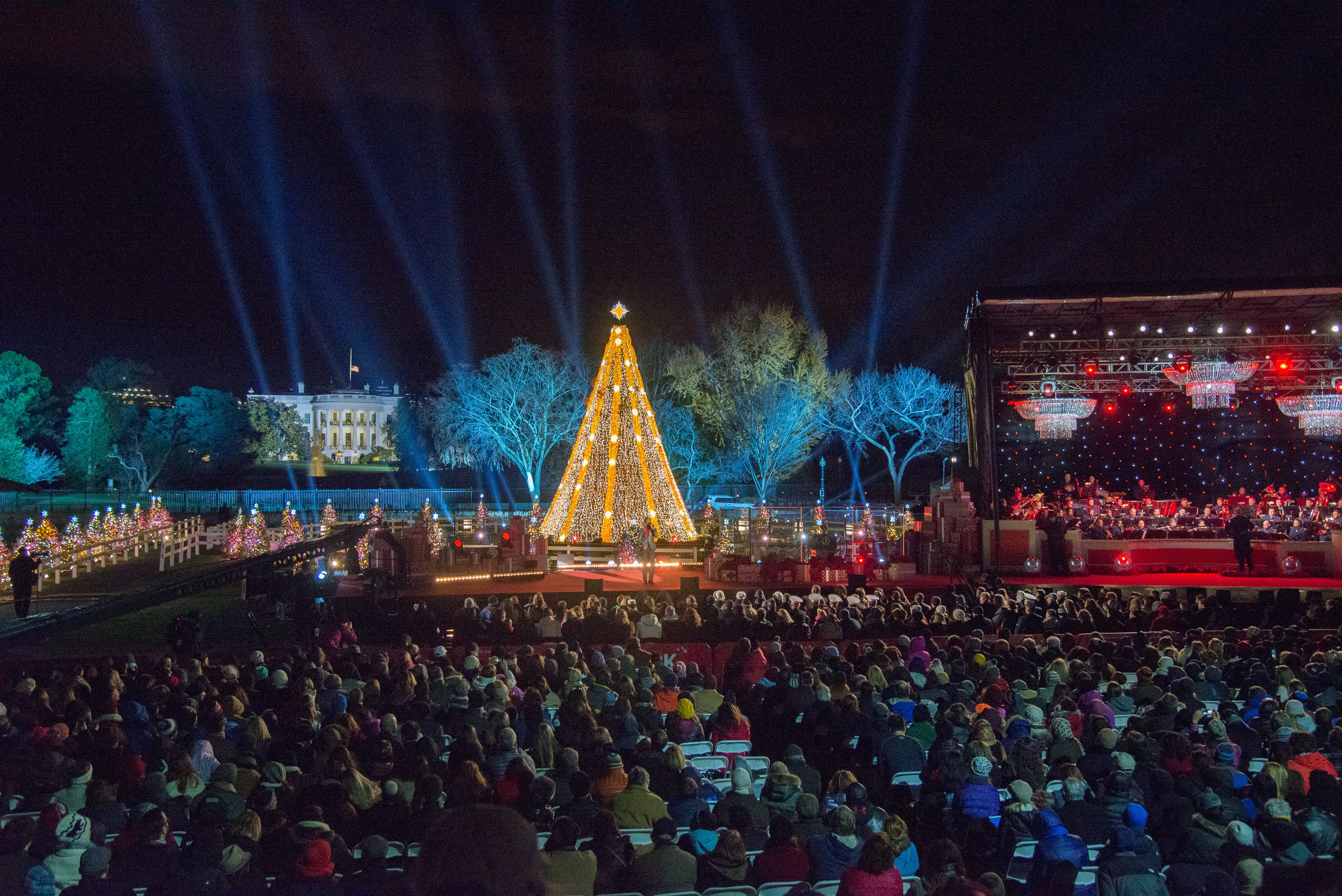 About the National Christmas Tree Lighting | National Christmas Tree ...