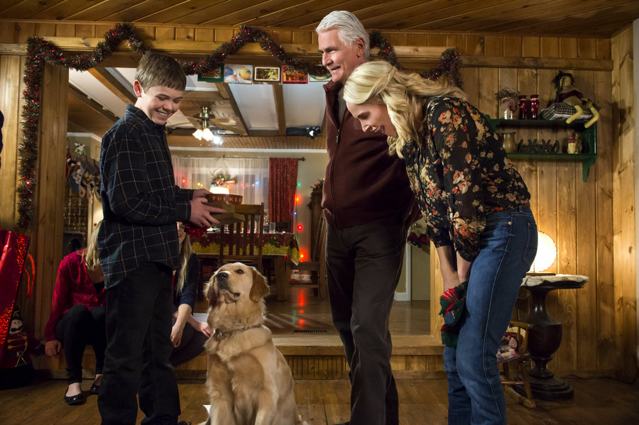 Christmas With Tucker.Photos Christmas With Tucker Hallmark Movies And Mysteries