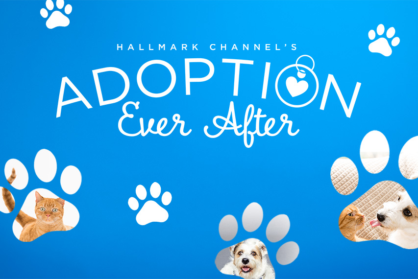 adoption ever after hallmark channel