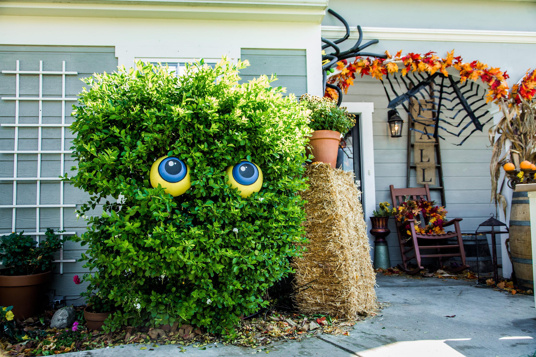 DIY Last Minute Halloween Decorations