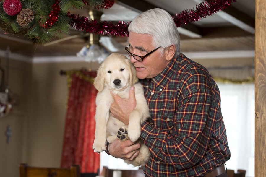 Christmas With Tucker.Cast Christmas With Tucker Hallmark Movies And Mysteries