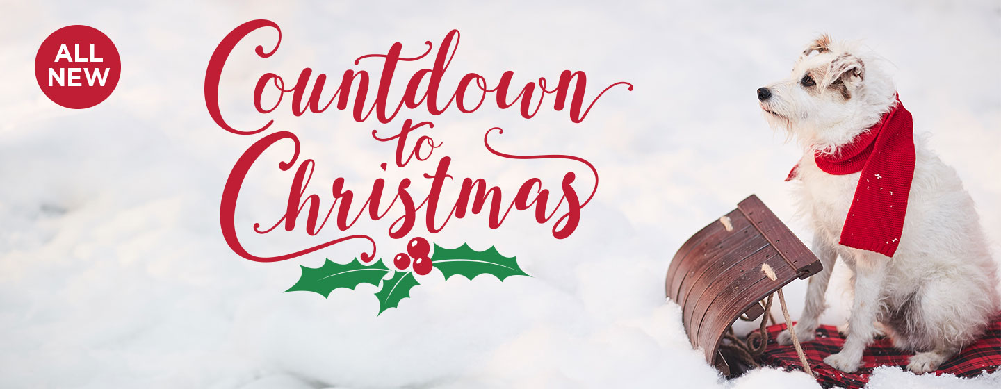 New Movies 2018 - Countdown To Christmas