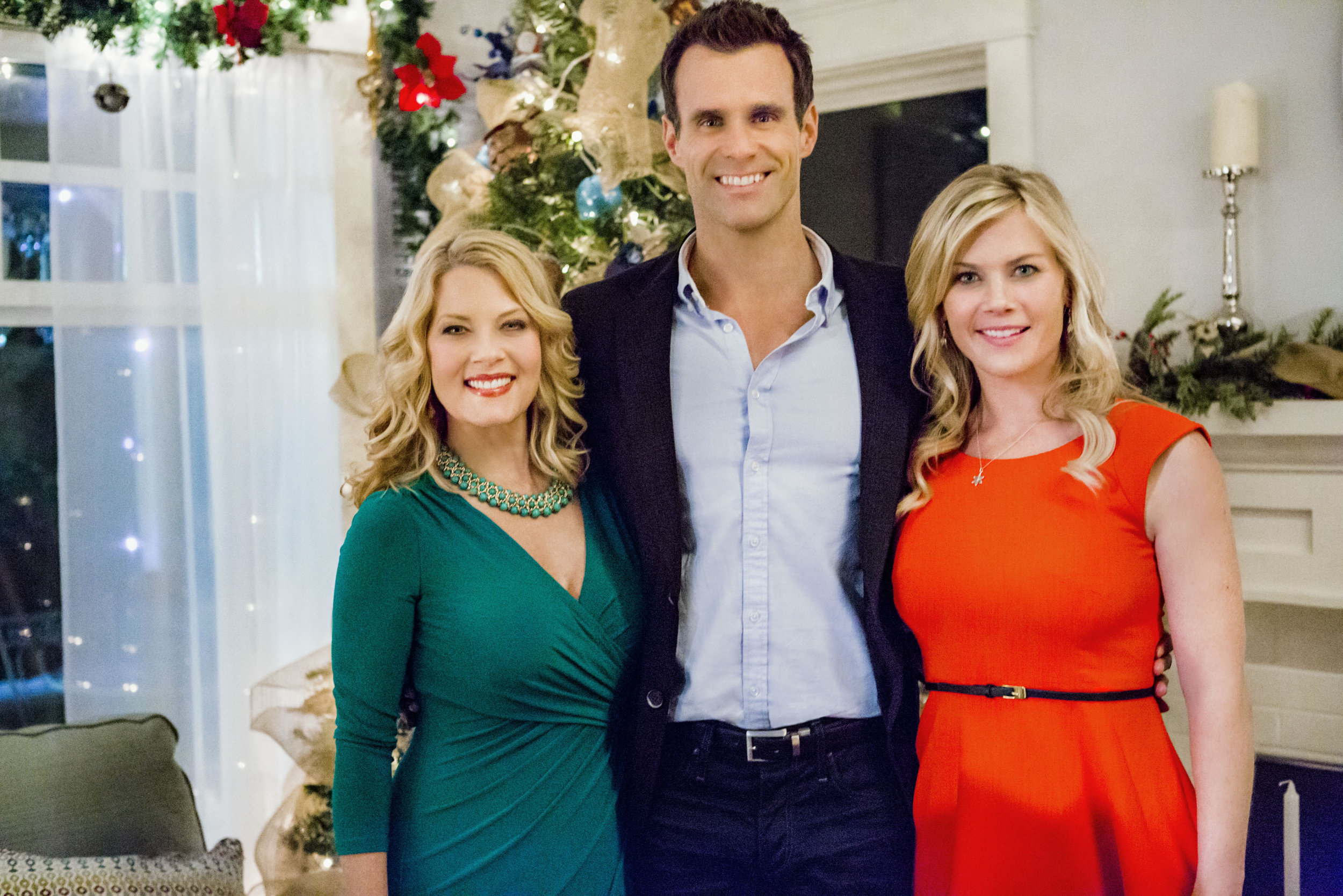 movies drama mystery more hallmark movies and mysteries - The Christmas Box Cast